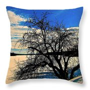 Solace On Silver Lake Throw Pillow