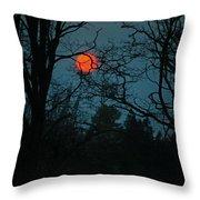 Solar Disguise Throw Pillow
