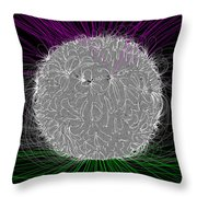 Solar Magnetic Field Throw Pillow