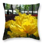 Solar Tulip Throw Pillow