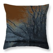 Solarization Throw Pillow