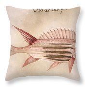 Soldier-fish, 1585 Throw Pillow
