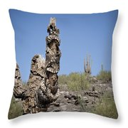 Soldier Of Misfortune Throw Pillow