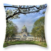 Soldiers Grove  Throw Pillow