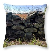 Soldier's View Of The Battlefield Throw Pillow