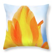 Soleggiato Throw Pillow