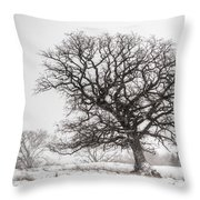 Solid Oak Throw Pillow