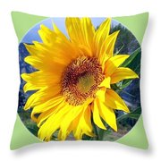 Solid Sunshine Throw Pillow