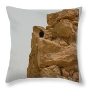 Solitary Bird At Masada Throw Pillow