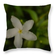 Solitary Flower Throw Pillow