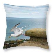 Solitary Seagull Take-off Throw Pillow
