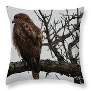 Solitary Sentinel Throw Pillow