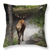 Solitary Stroll Throw Pillow
