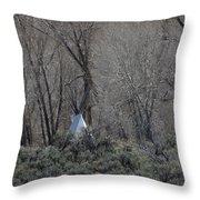 Solitary Tipi Throw Pillow