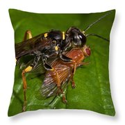 Solitary Wasp Throw Pillow
