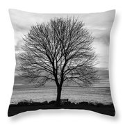 Solitude 3, New Castle Sunrise Throw Pillow