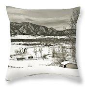 Solitude In Boulder County Throw Pillow