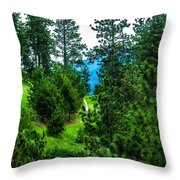 Solitude Journey Throw Pillow