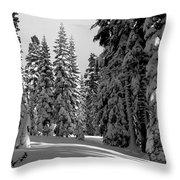 Solitude Throw Pillow by Kathy Yates