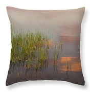 Solitute At The Lake Throw Pillow