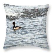 Solo Duck Throw Pillow
