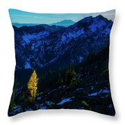 Solo Larch 2 Throw Pillow