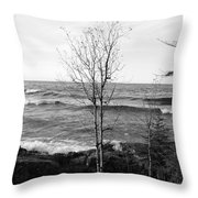 Solo Young Tree Throw Pillow