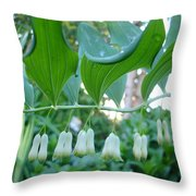 Solomans Seal In Spring Throw Pillow