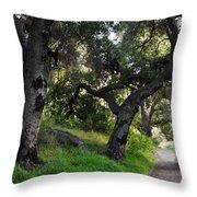 Solstice Canyon Live Oak Trail Throw Pillow
