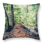 Somber Walk- Throw Pillow by JD Mims
