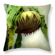 Sombre November  Throw Pillow