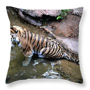 Some Cats Like Water Throw Pillow
