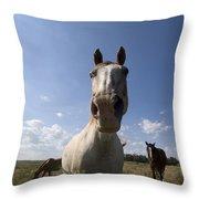 Some Horses Roam In Burwell, Ne Throw Pillow