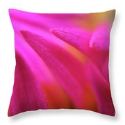 Some Of My Favourite Things Throw Pillow