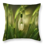 Some Snowdrops Throw Pillow
