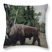 Some Travel Alone Throw Pillow