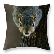 Somebody Say Food Throw Pillow