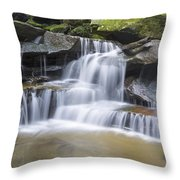 Somersby Falls 1 Throw Pillow