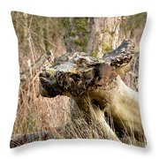 Something About A Dragon. Throw Pillow