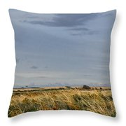 Something About Wind And Sun. Throw Pillow