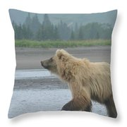 Something In The Air 2 Throw Pillow