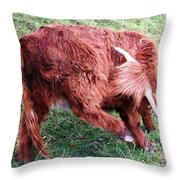 Something's Itching Throw Pillow