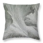 ''sometimes In Winter.....'' No.22, Tue--6dec2011 Throw Pillow