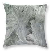 ''sometimes In Winter.....'' No.23, Tue--6dec2011 Throw Pillow