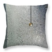 ''sometimes In Winter.....'' No.6, Thu--3feb2011 Throw Pillow