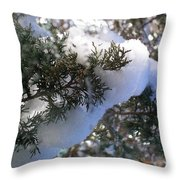 ''sometimes In Winter.....'' No.7, Tue--15jan2013 Throw Pillow
