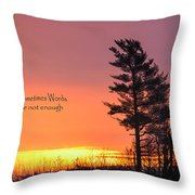 Sometimes Words Are Not Enough Throw Pillow