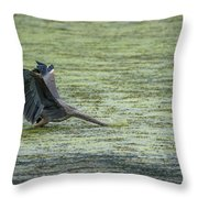 Sometimes You Just Go Head First... Throw Pillow by Steven Santamour