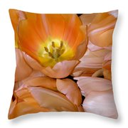 Somewhat Peachy Throw Pillow