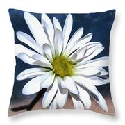Somewhere Between The Earth And Sky Throw Pillow